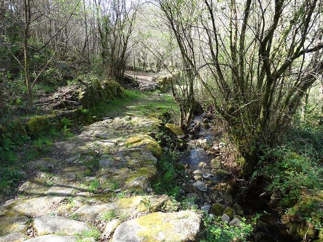 Camino de la ruta Tras os Pasos do río Barbeira - Ruta da Liberdade