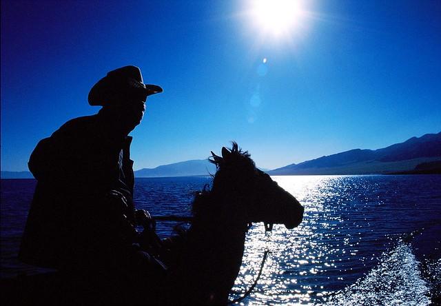 231/365: Xinjiang Cowboy Silhouette
