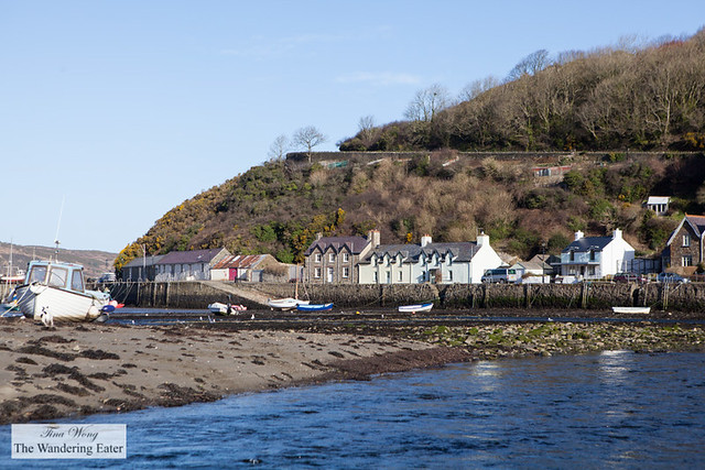 Fishing boats and homes on Fishguard Bay