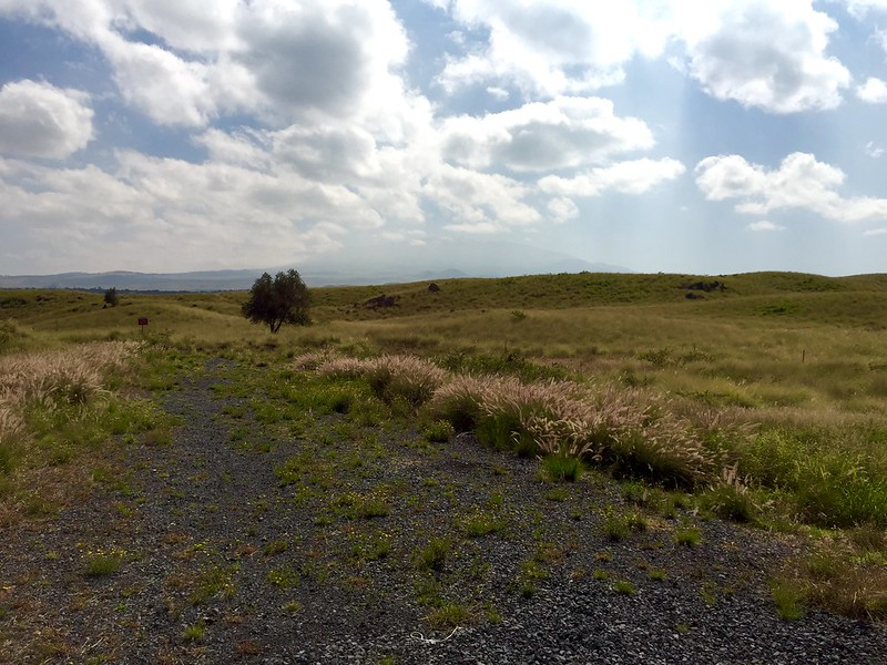 Mauna Kea in the distance