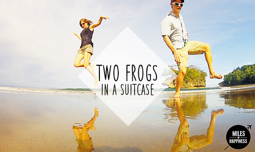 Two+Frogs+in+a+Suitcase