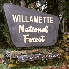 Come camp with me in the #Willamette #National #Forest #Oregon #OR #outdoors #follow please :wink: