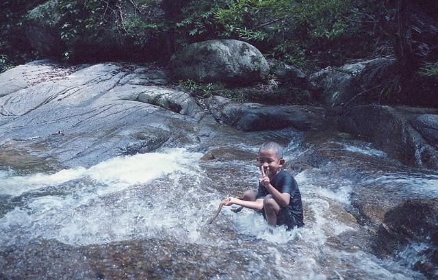Mt Ophir
