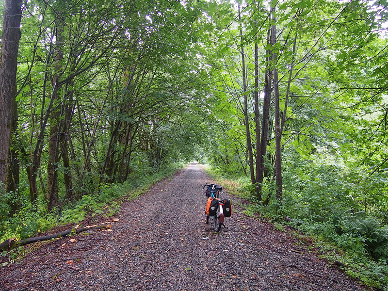 Whitehorse 'Trail': Supposedly a trail in Snohomish County, this part is just the old railbed sans rails and sleepers.