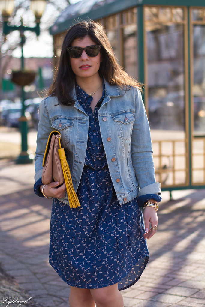 dragonfly print shirt dress, denim jacket.jpg