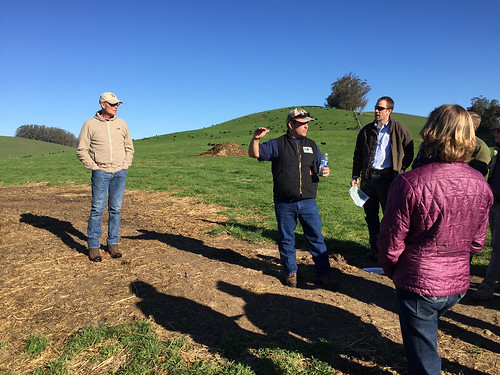 NRCS staff toured a ranching operation in Marin County, California to learn about ways that ranches can help store carbon and reduce greenhouse gas emissions. NRCS photo by Kari Cohen.