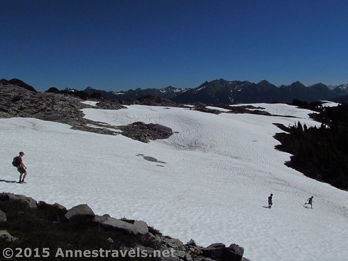 Snowfields atop Table Mountain, Mount Baker-Snoqualmie National Forest, Washington