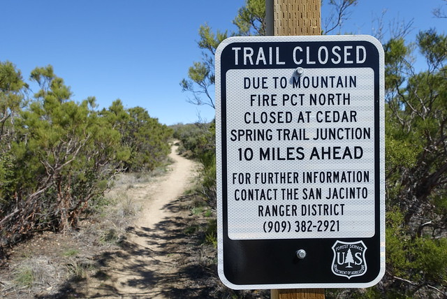 PCT. Hitched around 29 miles of trail.