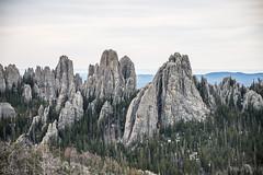 Badlands/Black Hills