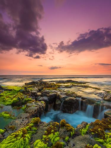 ocean sunset sky seaweed beach hawaii dusk bigisland kona kaheka keahole keaholepoint