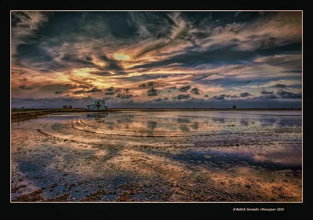 La marjal de Sueca espera l'ocàs 41 (Sueca's marsh waiting for sunset 41)