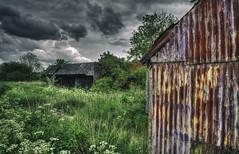 Derelict Farm