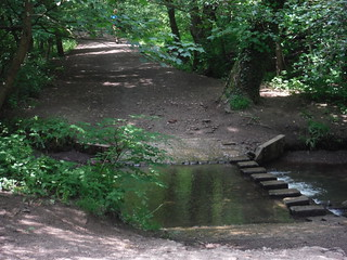 Stepping Stones in Bingham Park