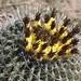Day Two to Quartzite, Arizona