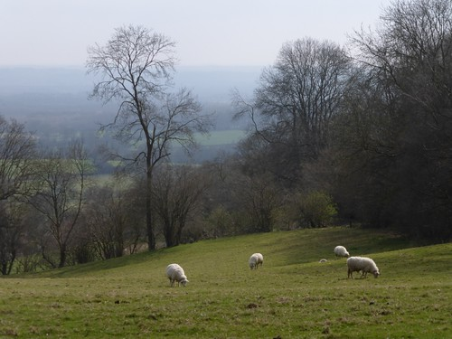 On the Greensand escarpment near Sevenoaks