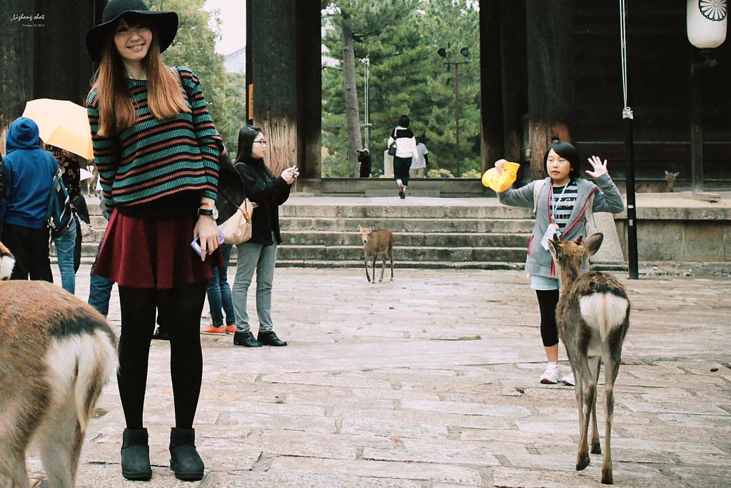 夏秋交替之間的京阪神之旅#奈良篇