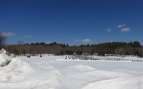 Peterson Farm - Winter 2015 by Rick Payette, via I {heart} Rhody