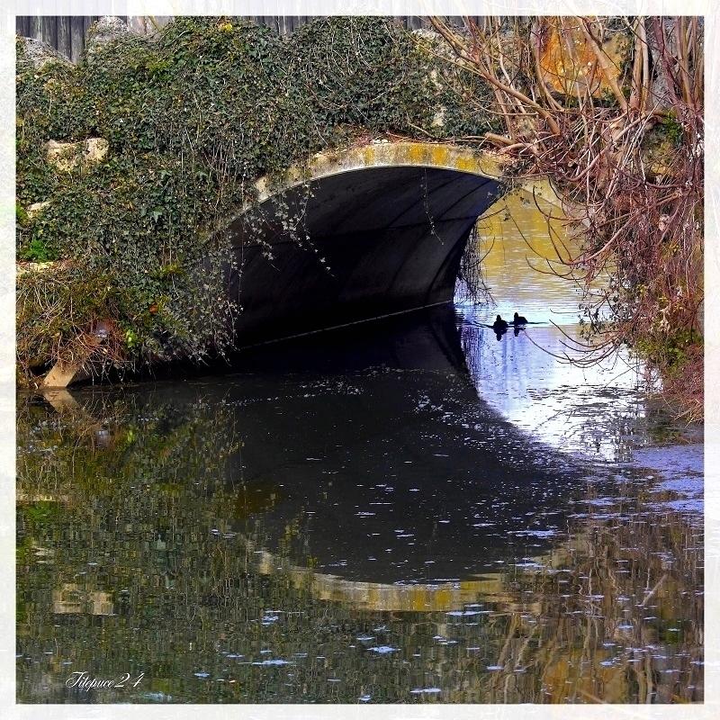"""L'oeil du vieux pont 1 et 2 et correction """" peps """" de la 1 16776148795_847665d3d7_o"""