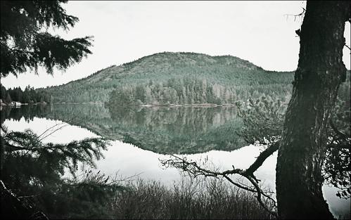 lake canada reflection bc vancouverisland shawniganlake