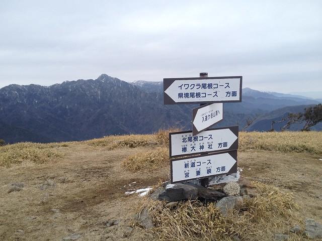 入道ヶ岳 イワクラ尾根分岐