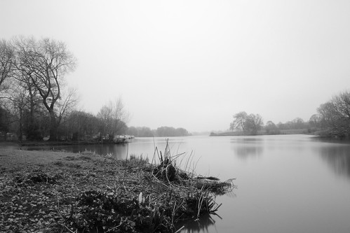 Winsford Misty Flashes