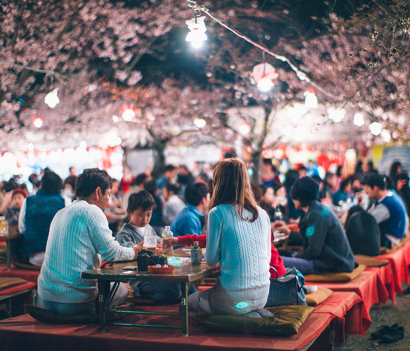 12.Roaming Under The Cherry Blossoms.