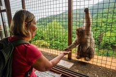 Tarja and a monkey
