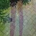 geometrias_parque_recortada