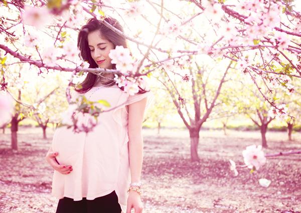 almond_blossom11