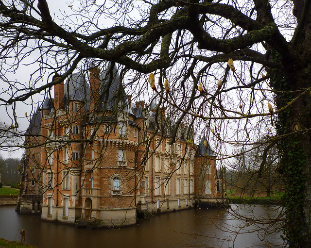 Aller voir la Loire... 16438263033_0515ca5382_z