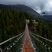 Sea To Sky Suspension Bridge, British Columbia by brianstowell