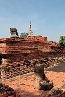 Image of Wat Phra Mahathat near Phra Nakhon Si Ayutthaya. thailand buddha buddhism ayutthaya chedi phukhaothong พระนครศรีอยุธยา ภูเขาทอง phranakhonsiayutthaya เจดีย์ภูเขาทอง
