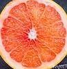 Pamplemousse / Grapefruit