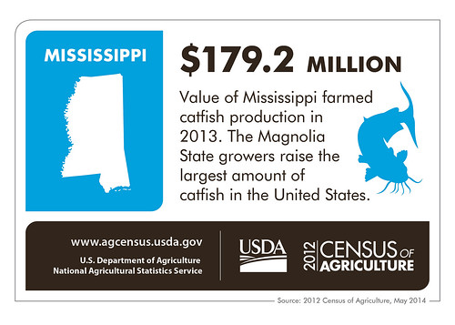 Catfish farming has helped Mississippi agriculture's bottom line.  Check back next week as we spotlight another state and look at more information from the 2012 Census of Agriculture.