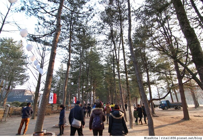 韓國 旅遊 韓國好玩 韓國 南怡島 韓劇景點 冬季戀歌場景 南怡島12