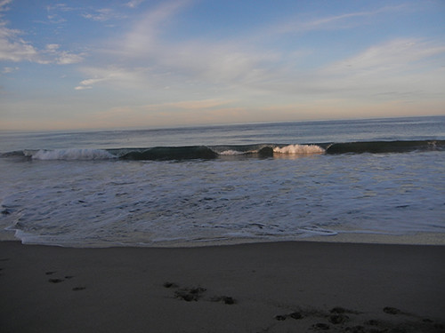 DSCN1842 Seascape Beach in Aptos, March 2015
