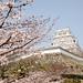 White Heron Castle with Sakura 8/白鷺城と桜 8 by nzom