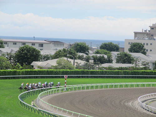 函館競馬場の指定席から海を眺める
