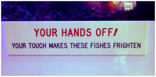 HANDS OFF ! -- Sign on Aquarium Inside the SEA SIDE DRIVE-IN