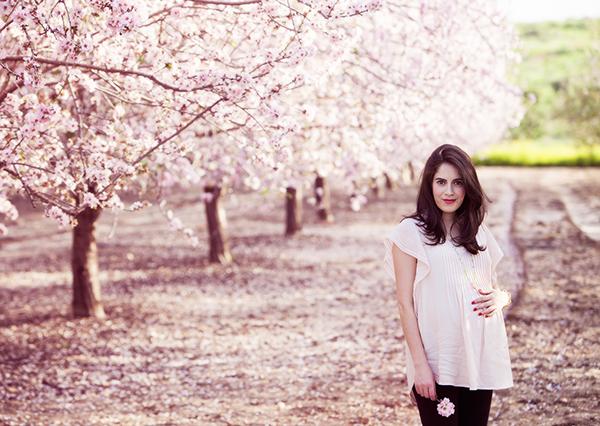 almond_blossom5