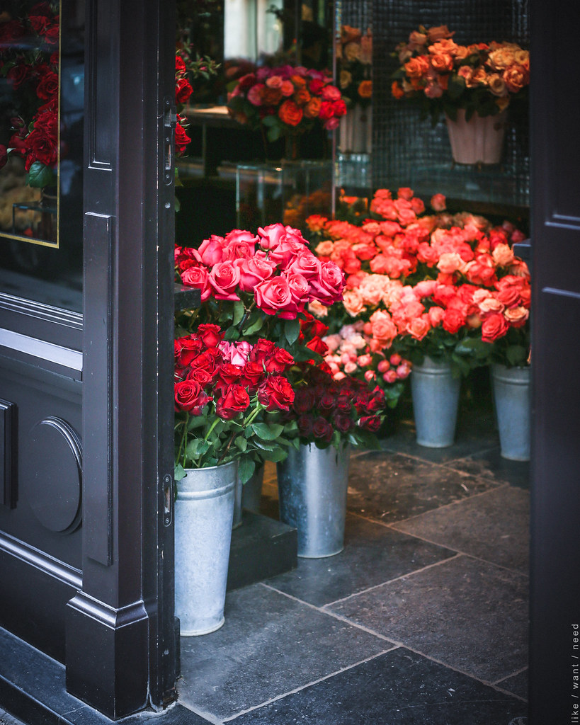 Roses Costes