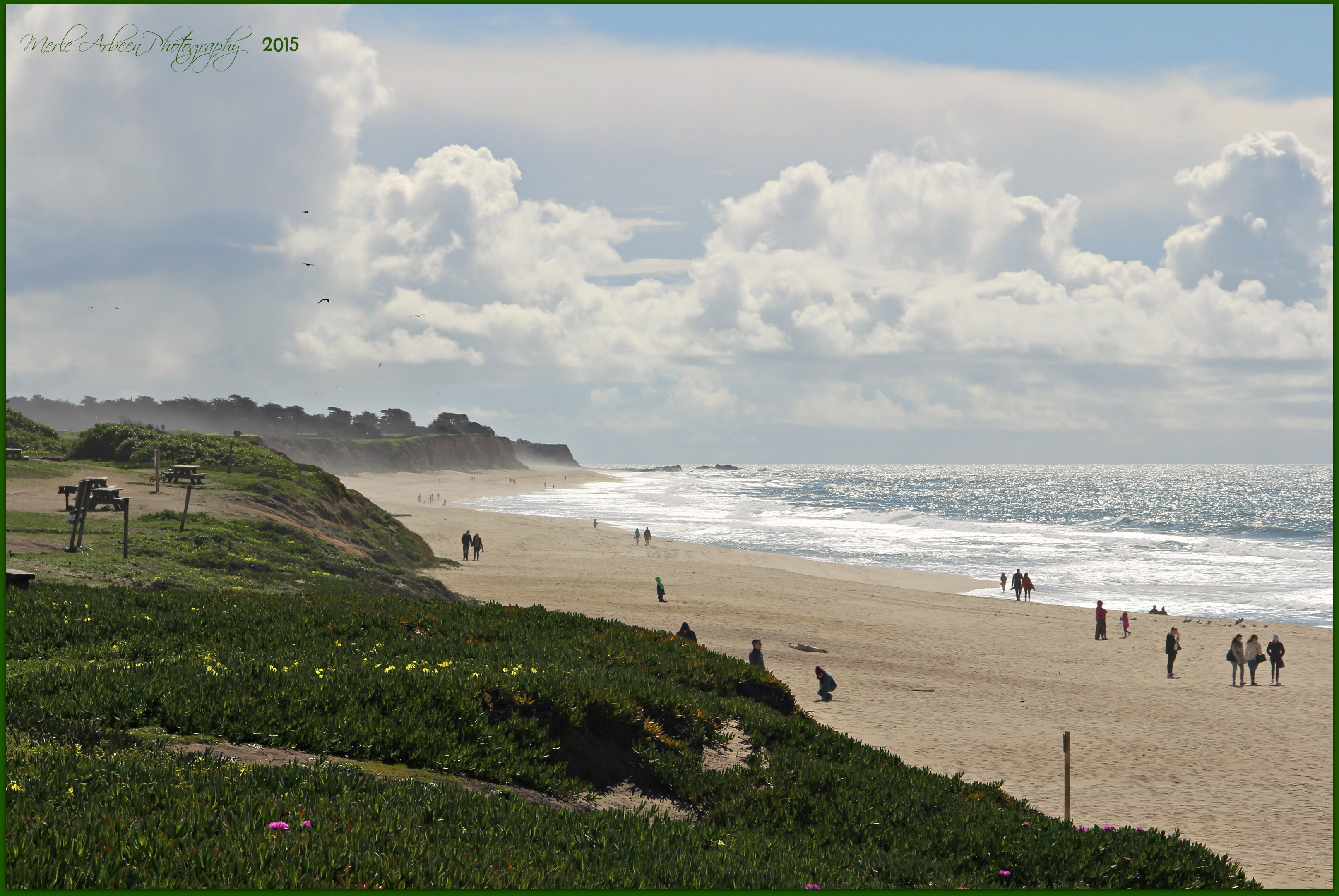 Elevation Of Verde Rd, Half Moon Bay, Ca, Usa -6476