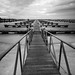 Small photo of Gangway monochrome