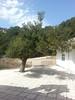 Kreta 2014 377