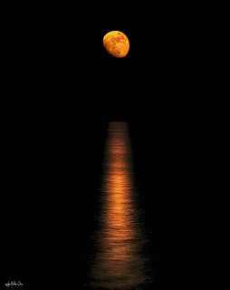 Catalina sobre el mar camino del horizonte a las 05:49, en Rota...