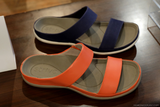 STRIVE SLIDES