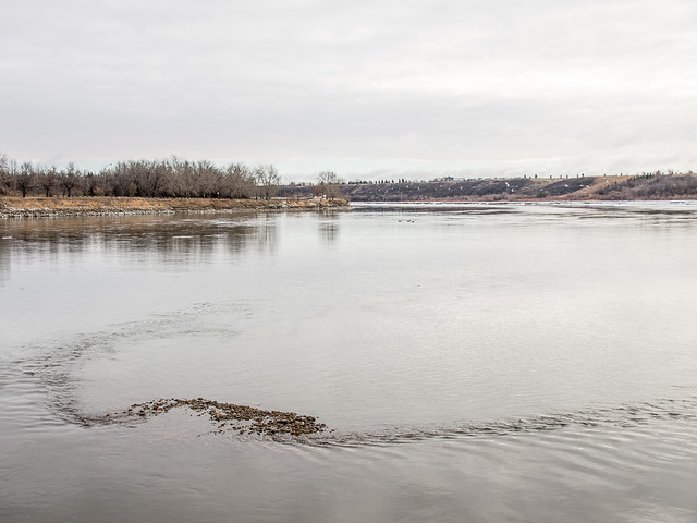 gray day by the river