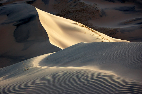 Kelso Dunes, Mojave National Preserve, 2015.