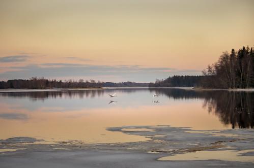 sunset finland spring pedersöre ostrobothnia lepplax färinabba