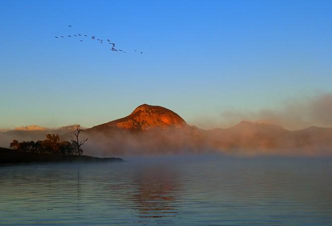 The Birds, Dawn at Lake Moogerah